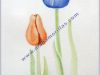 A-07-Tulipanes-Lanjaron-32.5x23cm.Acuarela